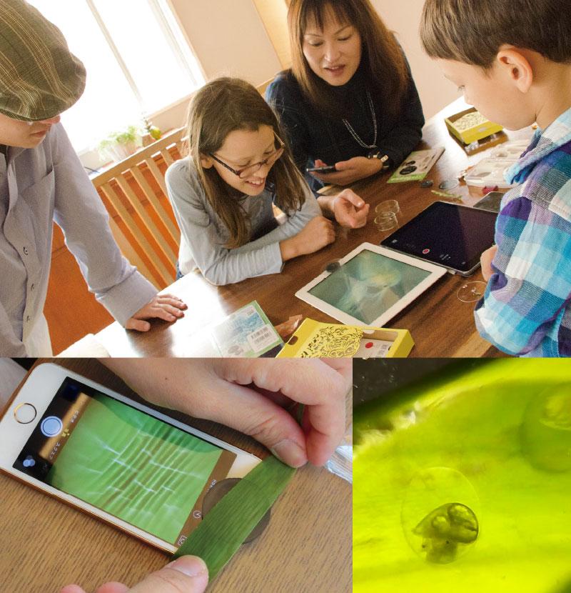 スマホ86顕微鏡未来教室